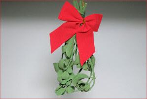 Real Mistletoe from Trader Joe's