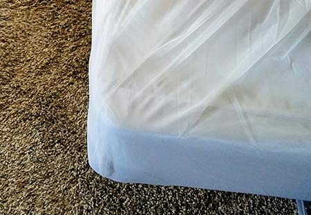 Bed bug prevention with Active Guard liners.
