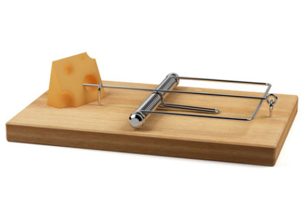 old wooden mouse trap with cheese as bait.