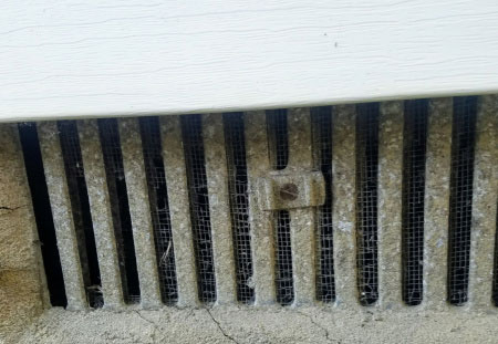 Foundation vent with broken screen. Mice in crawlspace.