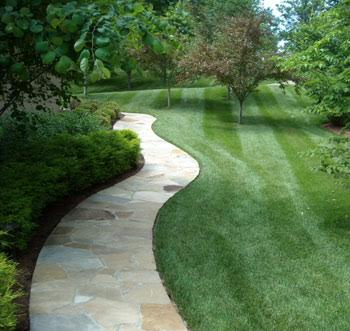 website pics-lawn install-1