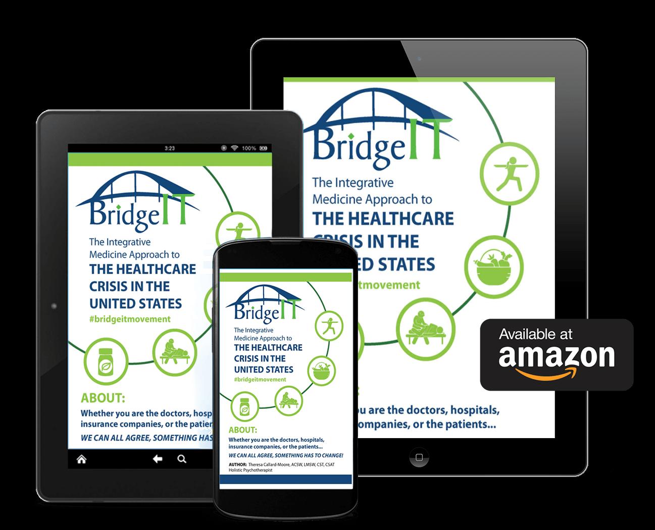 the-bridgeit-movement-holistic-health-book-available-on-amazon