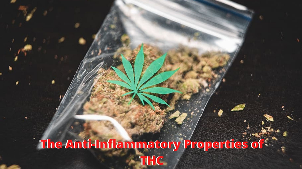 Learn About the Anti-Inflammatory Properties of THC