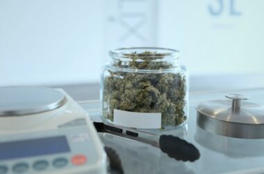IM Cannabis Clinical Survey Confirms Effectiveness of Proprietary Strains in Alleviating Symptoms of Seven Key Health Conditions