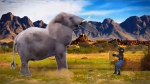 Humor in advertising: Ernest Packaging vs a bull elephant—who will win?