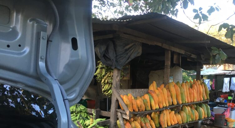 Apoya le economía local en Nicaragua