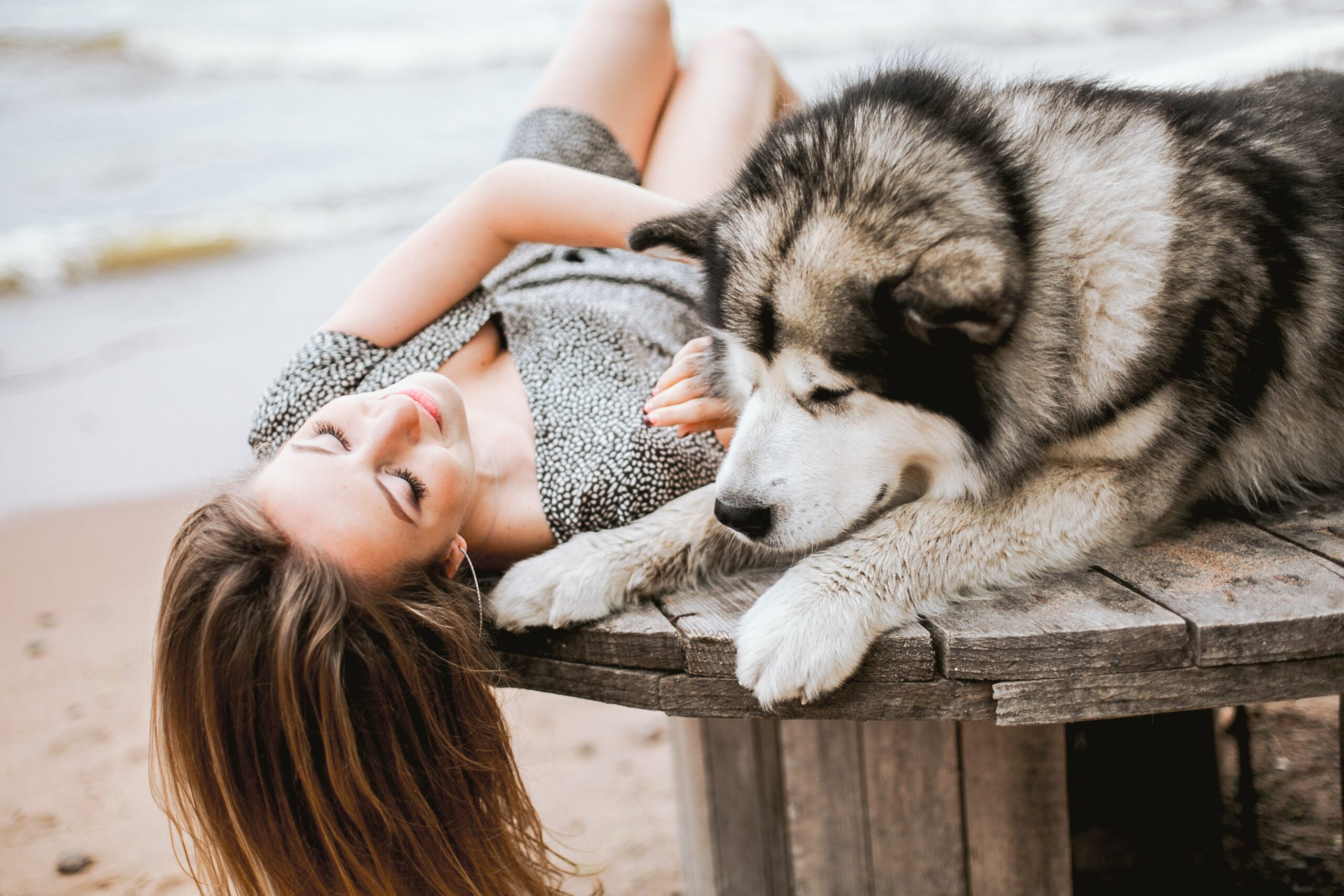 girl and malamute on a table