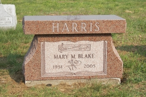 Harris pink pedestal style bench.JPG