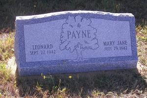 Payne Gray Slant.JPG
