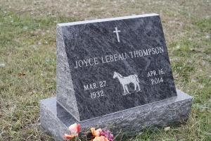 Thompson Blue Slant.JPG
