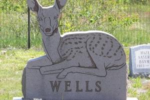 Wells Custom Shape Deer.JPG