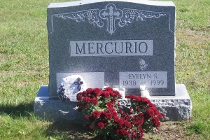 Mercurio Gray Upright.jpg