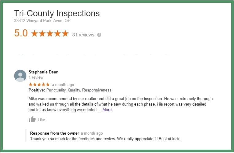 Home Inspector Review