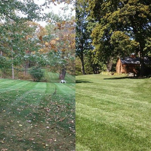 expert fall landscape clean up Bloomfield Hills, MI
