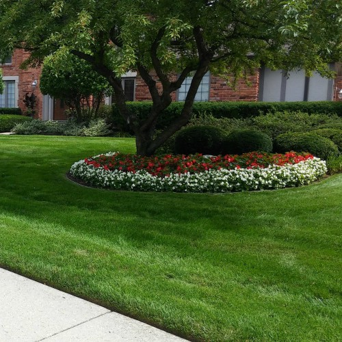 expert spring landscape clean up Bloomfield Hills, MI