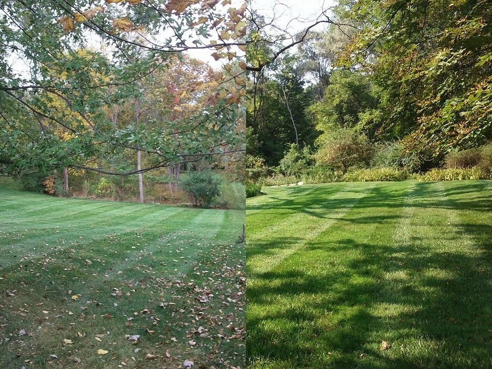 fall leaves cleanup service Bloomfield Hills, MI