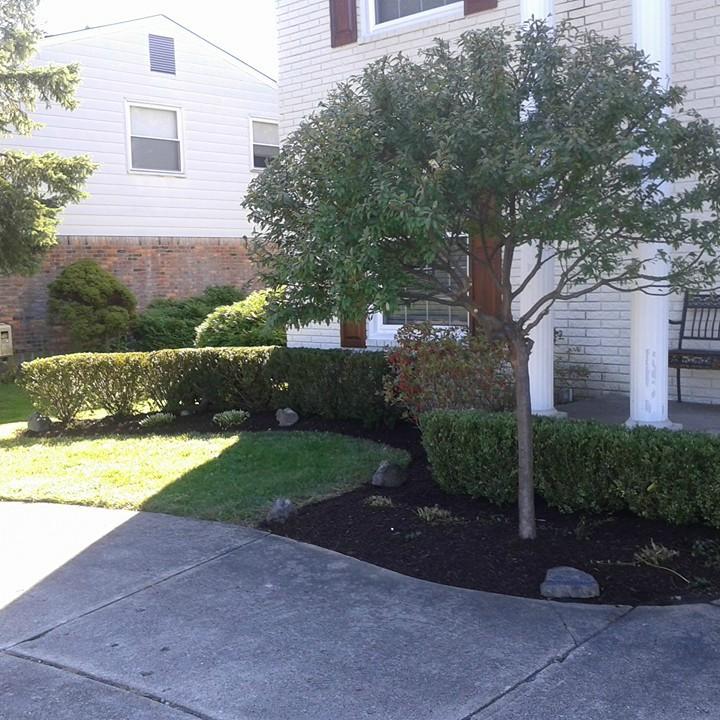 landscape installation professional service Bloomfield Hills, MI
