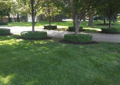 shrub tree maintenance Bloomfield Hills, MI