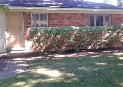 shrub tree trimming pruning Bloomfield Hills, MI