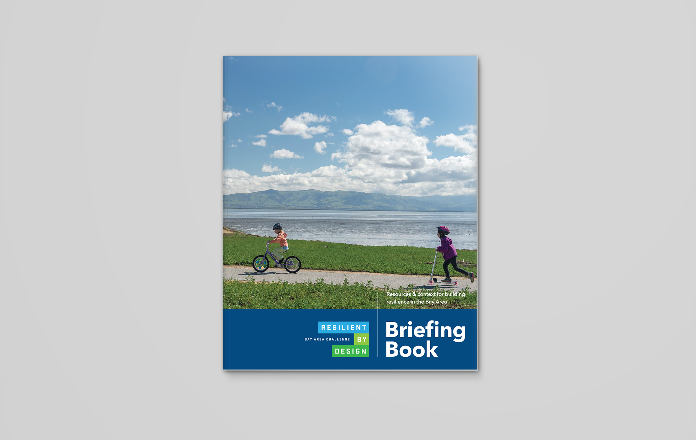 resilient-by-design-briefing-book-cover