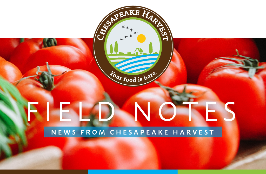 July Field Notes