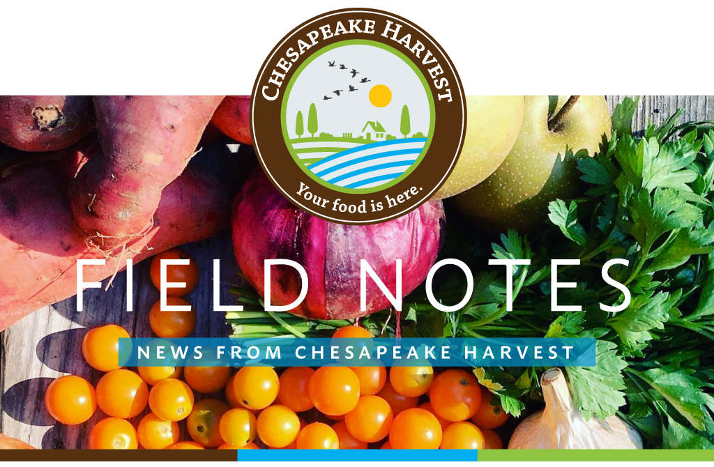 August Field Notes