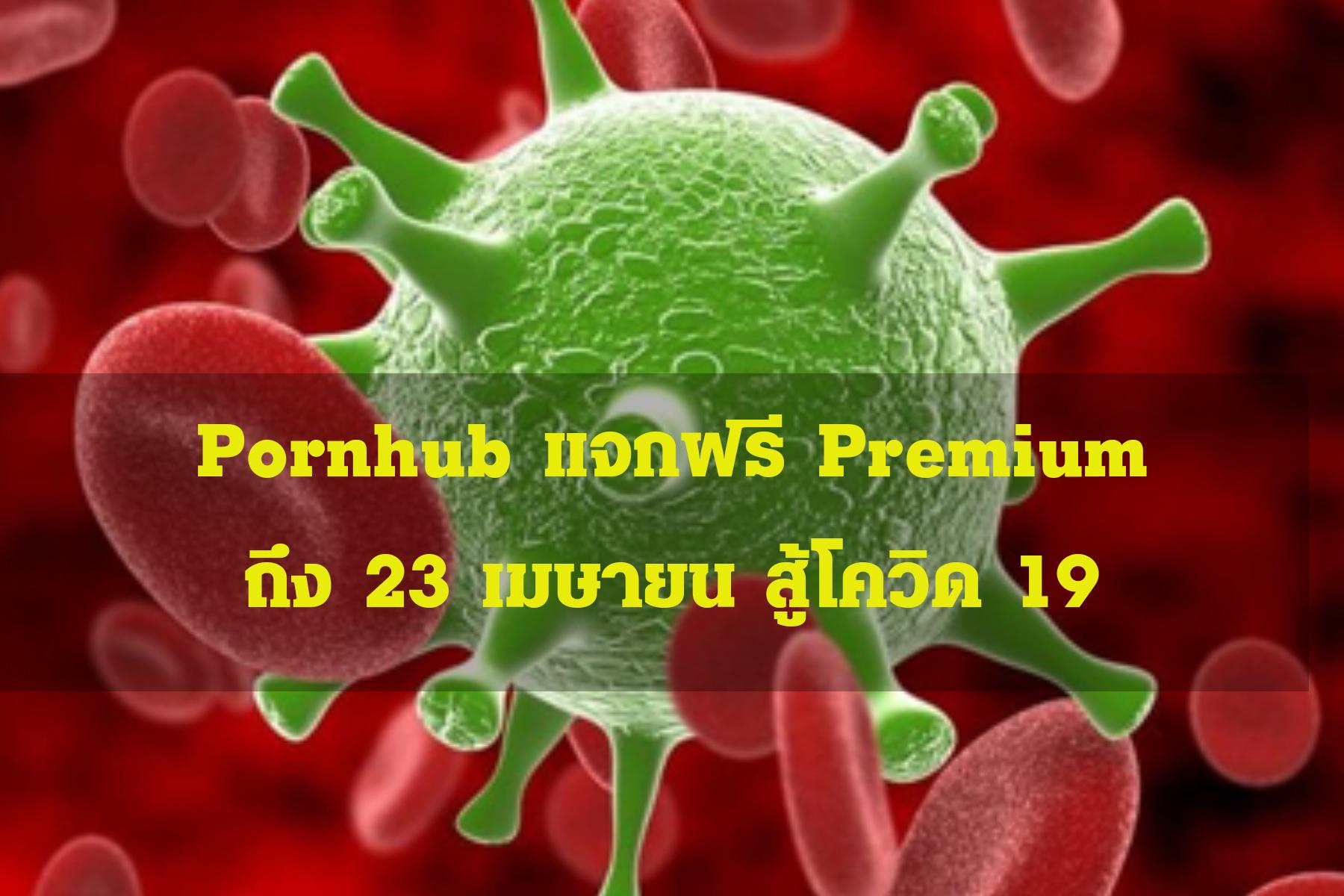 Pornhub แจกฟรี Premium ยาวเลยถึง 23 เมษายน สู้โควิด 19