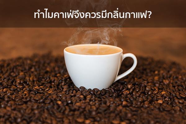 ทำไมคาเฟ่จึงควรมีกลิ่นกาแฟ? ข่าวน่ารู้ อัพเดทสถานการณ์ เรื่องเล่า สาระความรู้ คู่ความบันเทิง