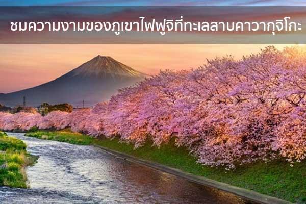ชมความงามของภูเขาไฟฟูจิที่ทะเลสาบคาวากุจิโกะ ข่าวน่ารู้ อัพเดทสถานการณ์ เรื่องเล่า สาระความรู้ คู่ความบันเทิง