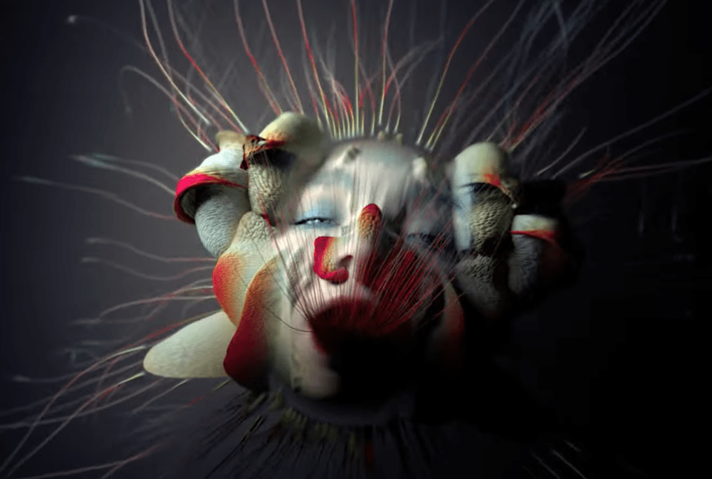 "Watch Björk's New ""Tabula Rasa"" Video 