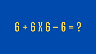 Photo of No One Can Solve All 10 Of These Easy Equations