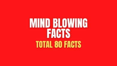 Photo of 80 mind-blowing facts that will Help You Get Smarter