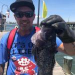 061718 Sea Bass Charter 4 Ocean City Maryland