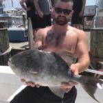 063019 Fishing Report - Trigger Fish
