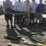071218 Mahi | Fishing Report Ocean City Maryland