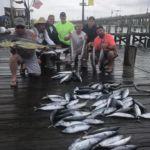 081118 Ocean City Fishing Report