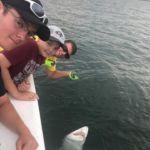 081218 Shark Fishing Report Ocean City MD