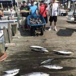 081618 Ocean City Fishing Report