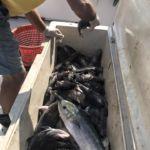 082518 Fishing Report OC 4