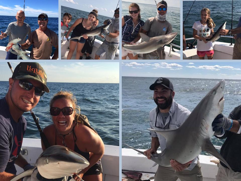 3 Hour Shark Trips Ocean City Maryland