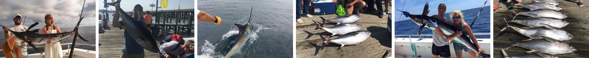 Ocean City Maryland Tuna Fishing