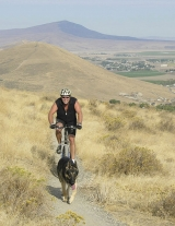 <p>Mountain biking and trail running are major attractions</p>