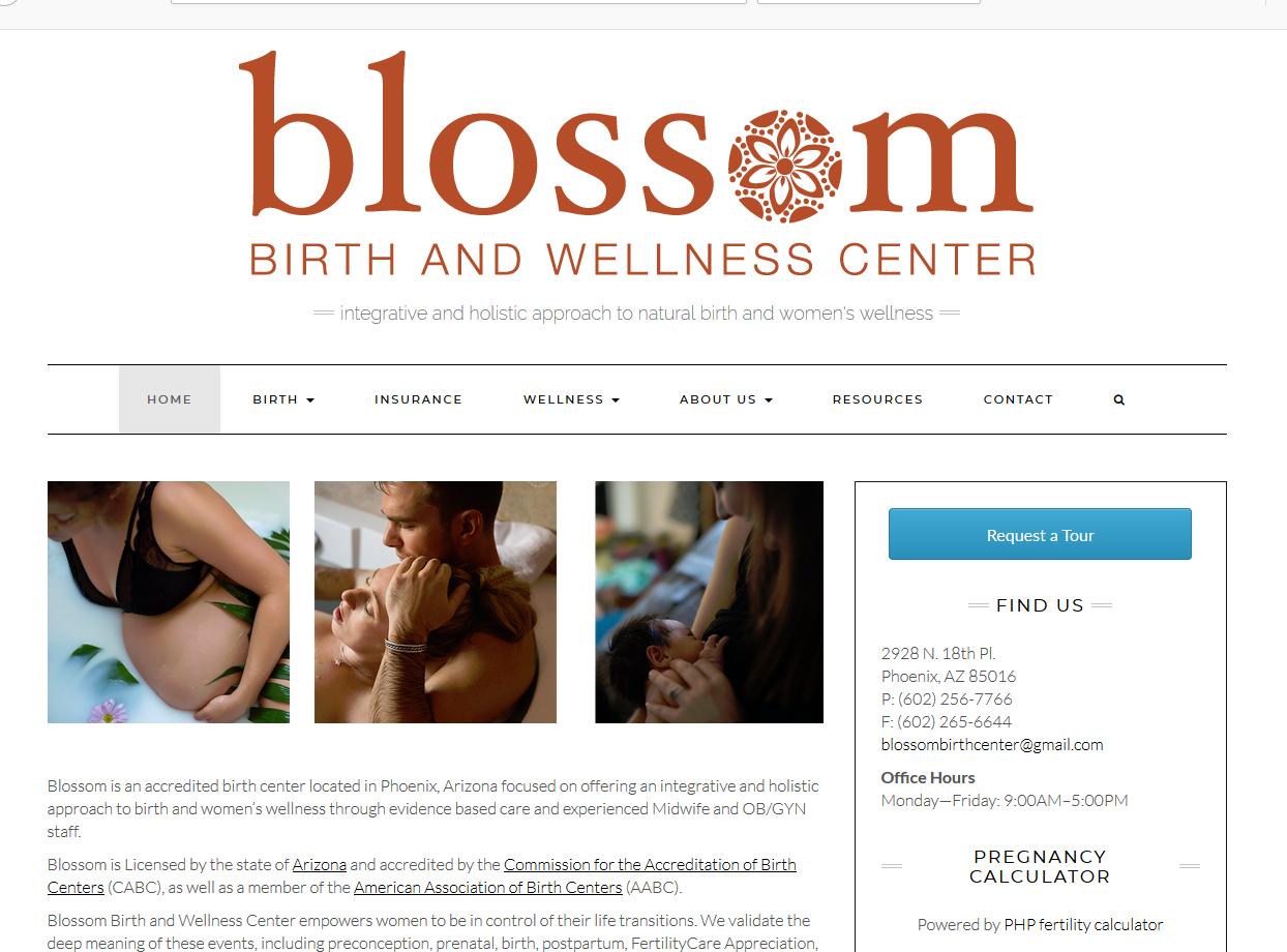 Blossom Birth and Wellness Center Portfolio Project James Wieland Front End Dev