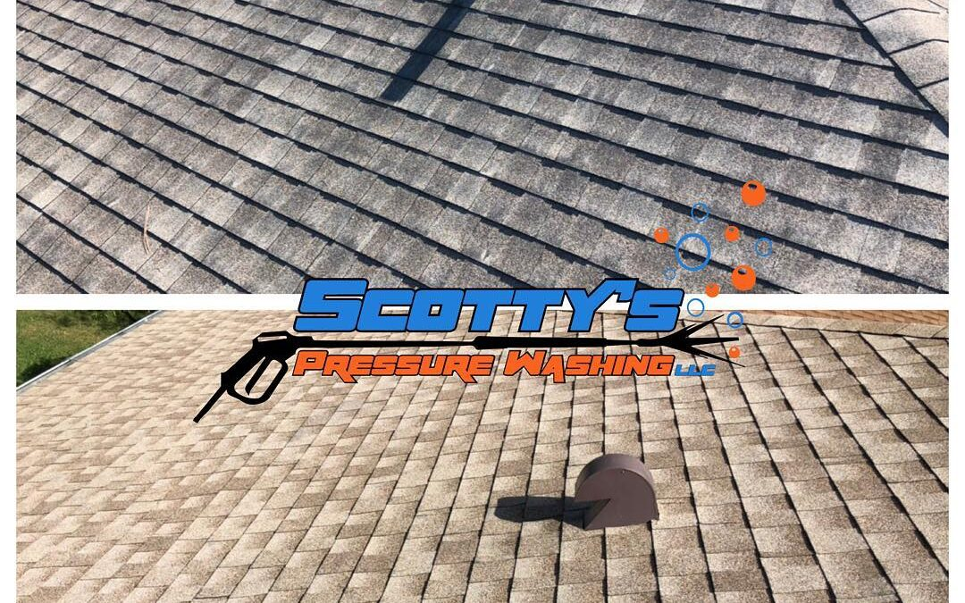 How Often Should I Clean My Roof?