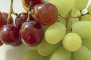 Grapes are a common choking hazard.