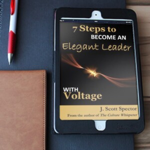 Click image for FREE EXCERPT of the Elegant Leader book
