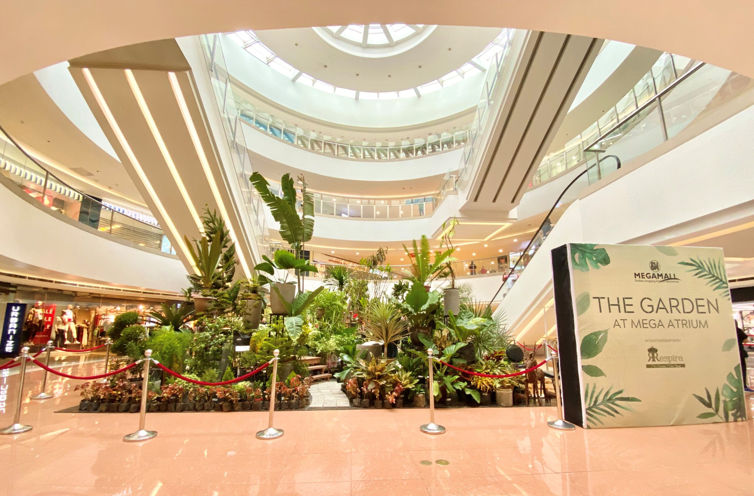 SM Megamall Puts Up an Indoor Botanical Garden (and My Plantita Heart is Happy)