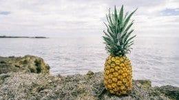 fruit formation without fertilization