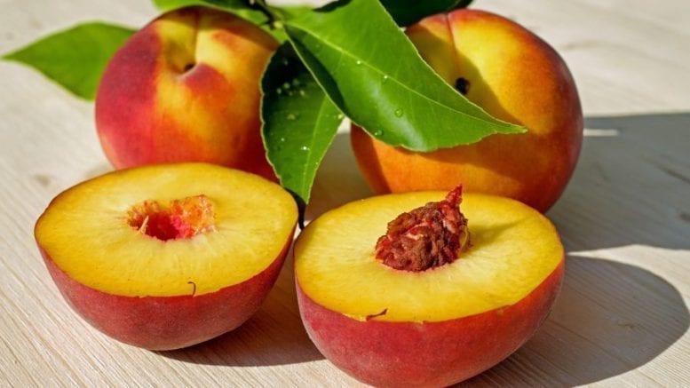 False fruits