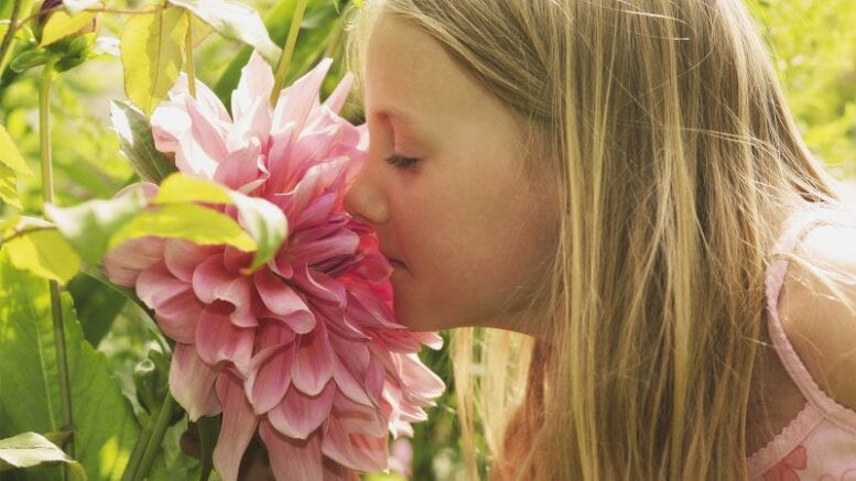how-anosmia,-or-'smell-blindness,'-can-help-pinpoint-covid-19